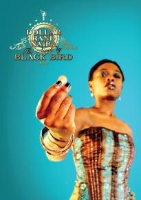 Black Bird   Zimbabwe *Photo provided by artist